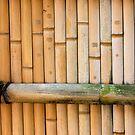bamboo notes by yvesrossetti