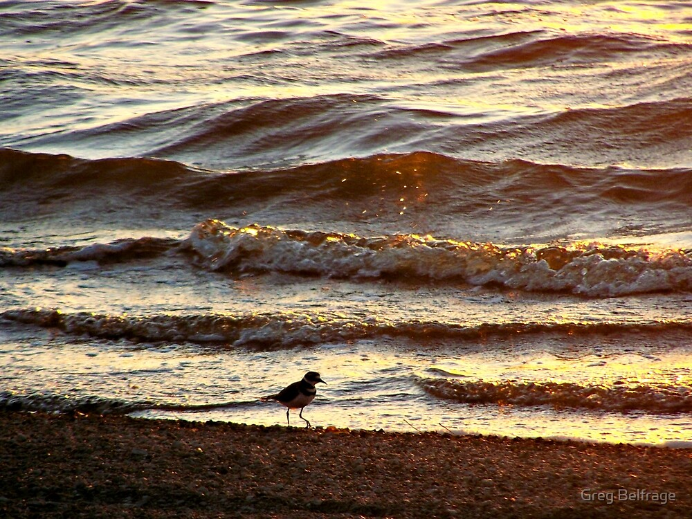 Walk on the Beach by Greg Belfrage