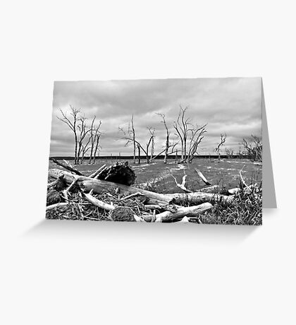 Gloomy Waters Greeting Card
