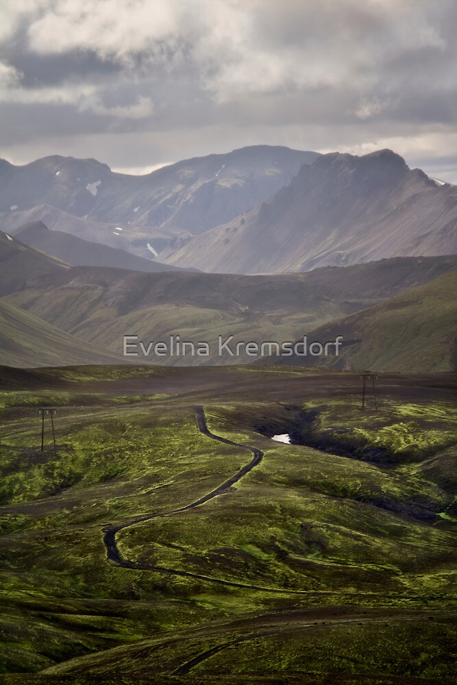 In The Land Of The Few by Evelina Kremsdorf
