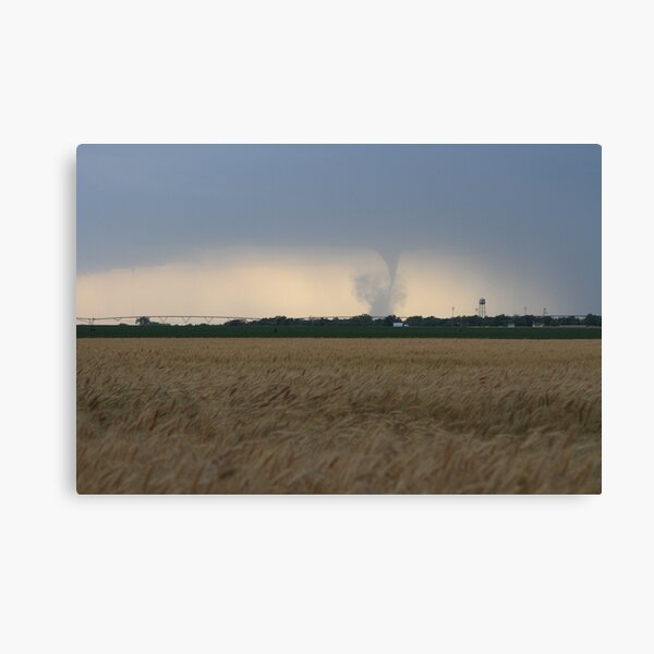 Twisting by the wheat Canvas Print