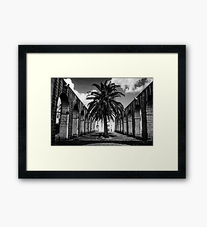 Palm in the Middle Framed Print