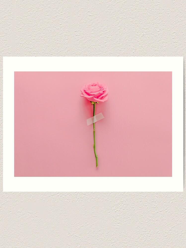 Alternate view of Rose Flower  Art Print