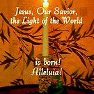The Light of the World by Paula Tohline  Calhoun