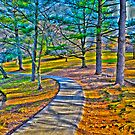 colorful path by Cranemann