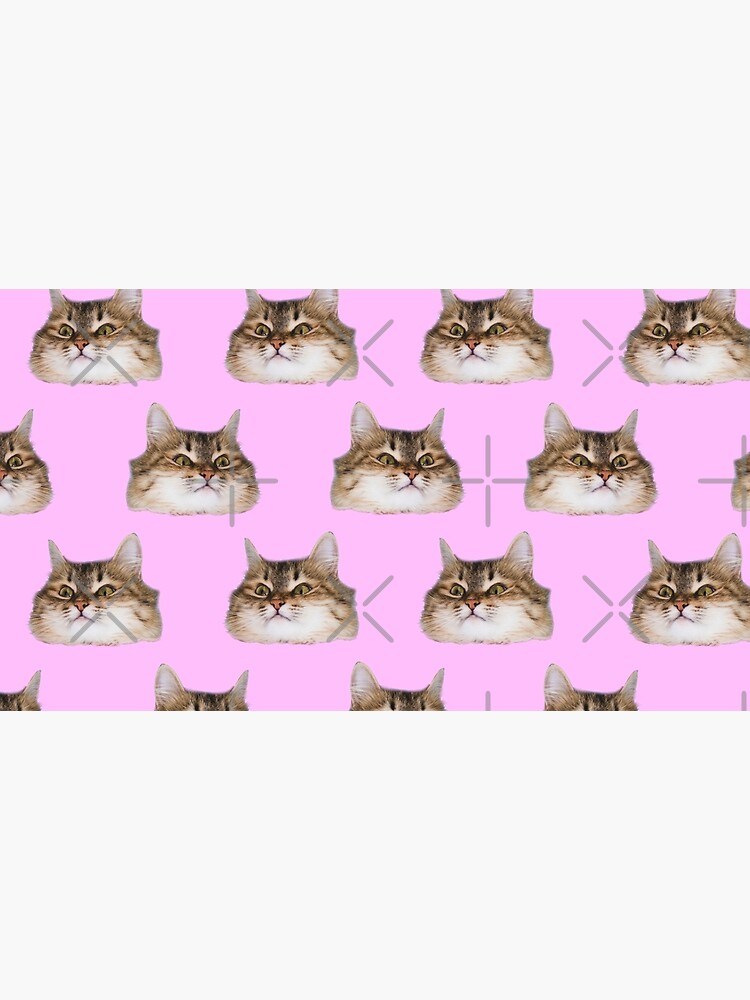 Funny cat's heads on pink by KatyaHavok