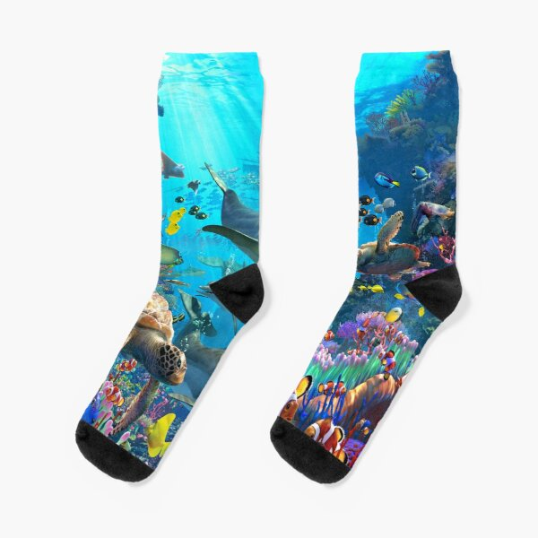 Dolphin Playground Socks