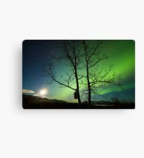Yukon Northern Lights 2 Canvas Print