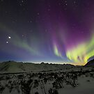 Yukon Northern Lights 3 by Phil Hart