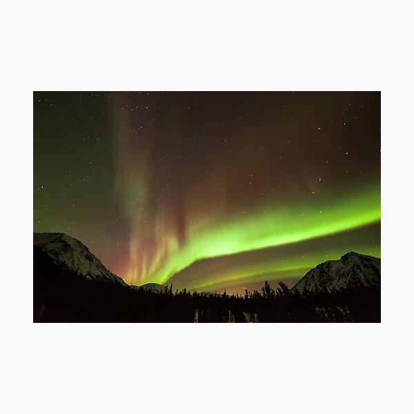 Yukon Northern Lights 4 Photographic Print