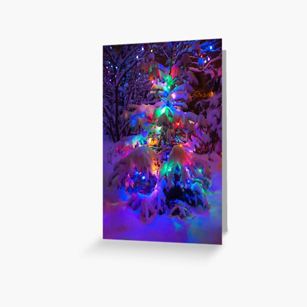 Colored lights on a snowy pine tree Greeting Card