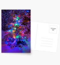 Colored lights on a snowy pine tree Postcards