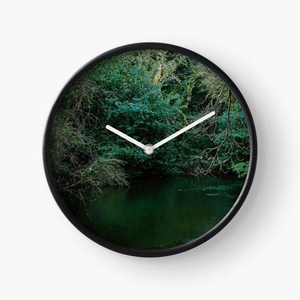 Green woodland lake, East Lothian  Clock