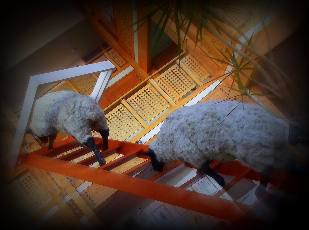 Funky Sheep by janett8