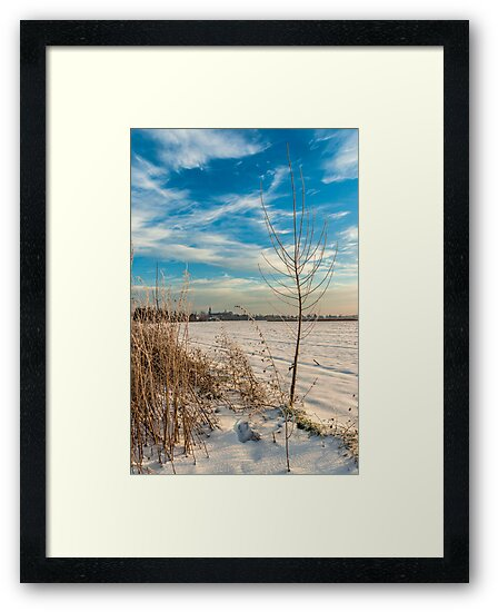 Meerbusch Lank, NRW, Germany. by David A. L. Davies
