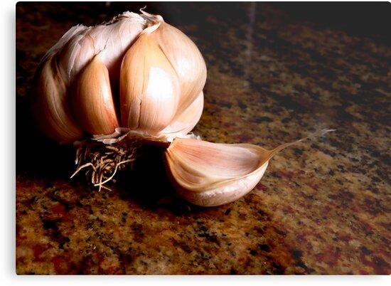 Garlic Bulb...please read discription by Diane Arndt