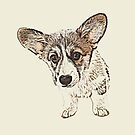 I'm all ears by Sarah Guiton