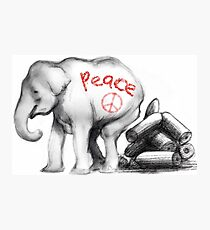 Peace Elephant  Photographic Print