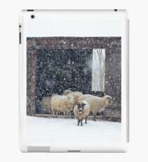 Winter Snow on Sheep Coque et skin iPad