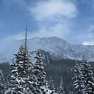 Loveland Pass Winter Wonderland by KimSha