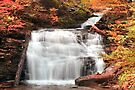 Columbus Day At Mohican Falls by Gene Walls