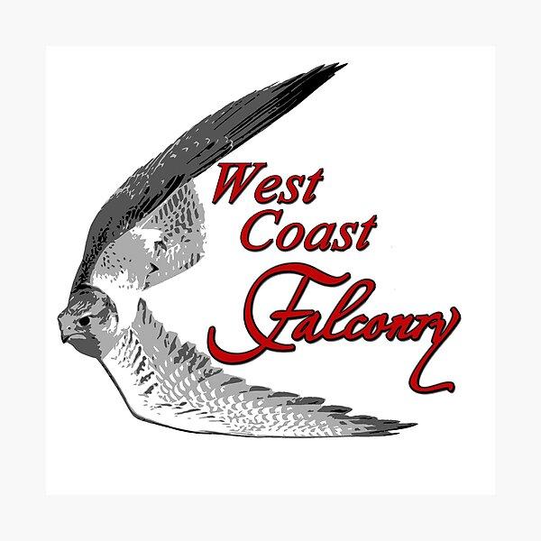 West Coast Falconry Photographic Print