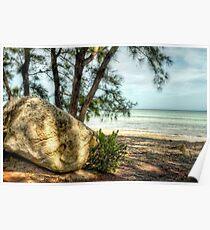 Yamacraw Beach in Nassau, The Bahamas Poster