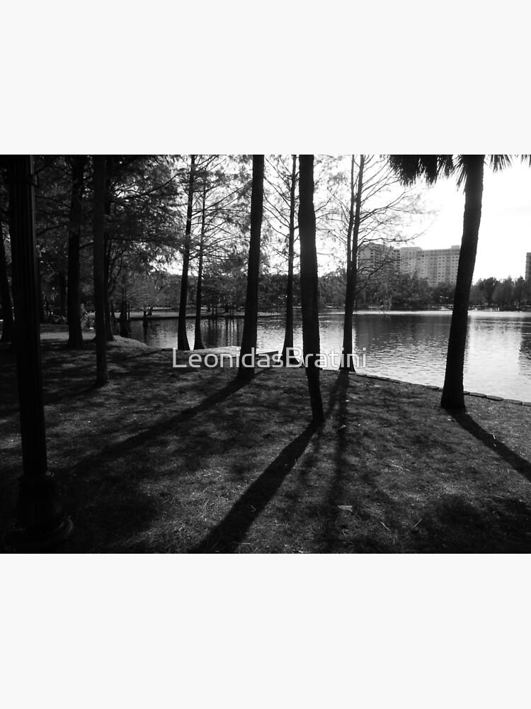 The Woods  by LeonidasBratini