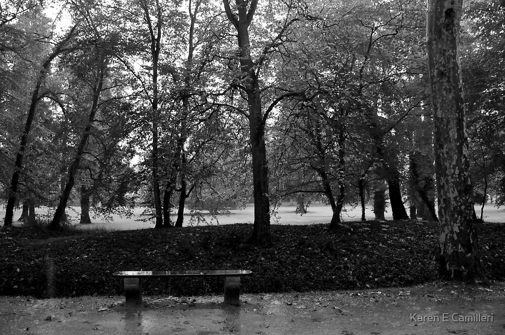 Lonely bench at Chenonceau  by Karen E Camilleri
