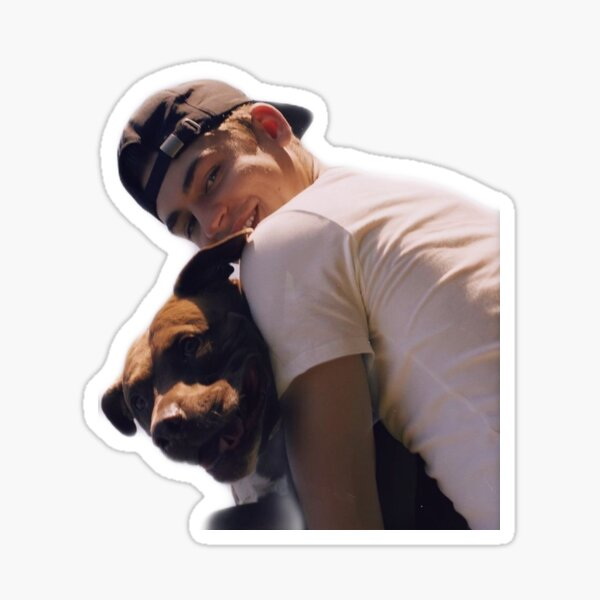 HERO FIENNES TIFFIN Sticker