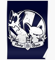 Pinky & The Brain Poster