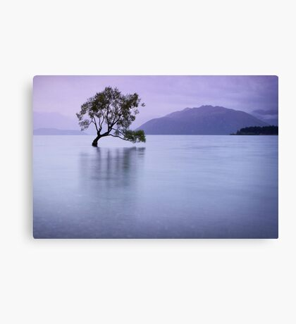 The Tree in the Lake Canvas Print