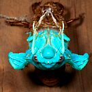 Gem in the night  - Green Grocer Cicada -  Transformation by john  Lenagan