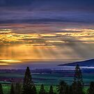 Maui Sunset  - 12/3/12 by NealStudios