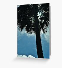 palm 5 Greeting Card