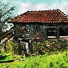 An Old Barn in Romania by Dennis Melling