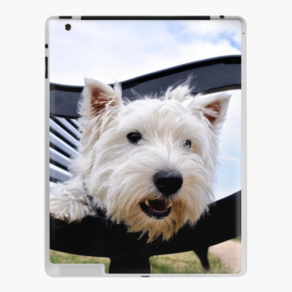Westie, west highland terrier, Bella - just sayin', prints and gifts iPad Skin