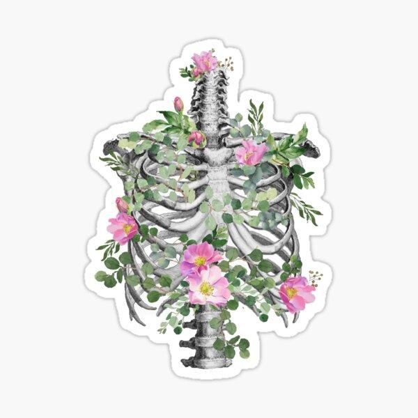 Anatomy, ribcage, rib cage,skeleton pink roses Sticker
