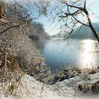 Winter Sun by Yool