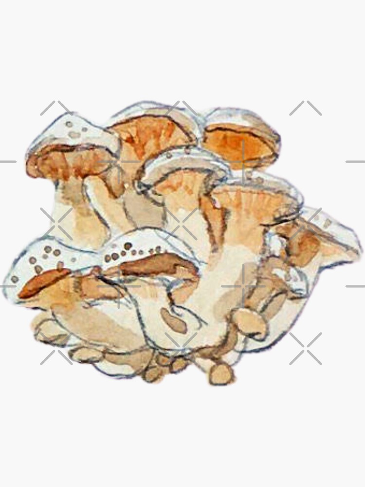 Honey Mushroom Clump - Watercolor Mushrooms by WitchofWhimsy
