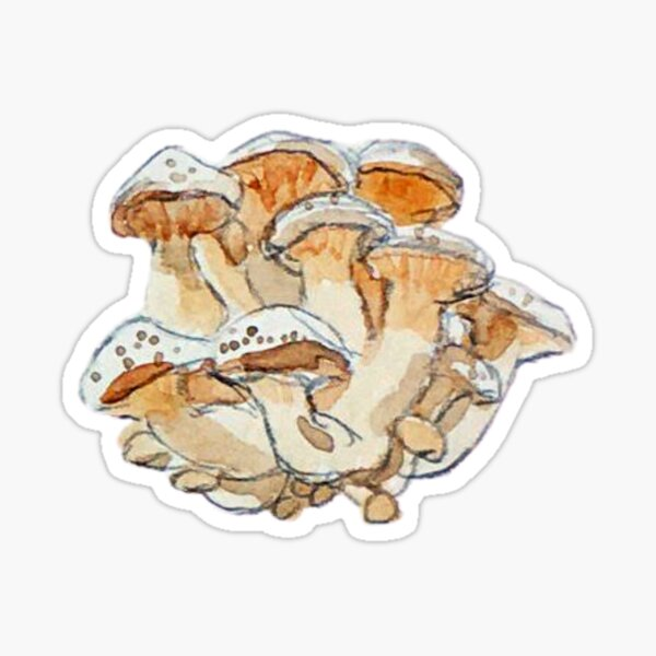 Honey Mushroom Clump - Watercolor Mushrooms Sticker