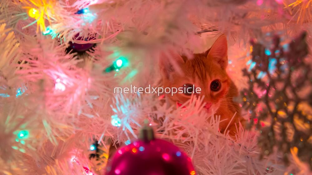 Christmas Kitten by Jessica Liatys