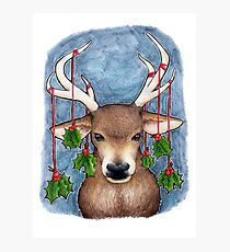 Deer with Holly Photographic Print