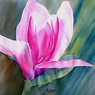 Asian Magnolia bloom by Anne Guimond