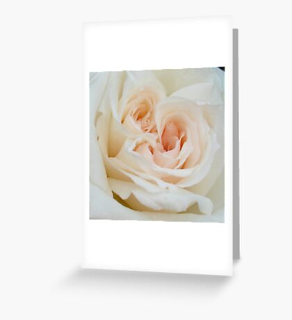 A Double Hearted Romantic White Rose Greeting Card