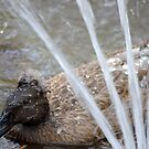 Rouen Duck by Jazzy724