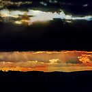 skyfall by x- pose