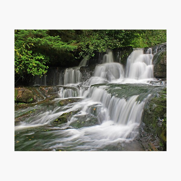 Alsea Falls, Oregon Photographic Print