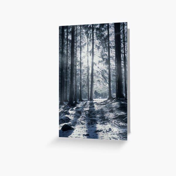 """Winter solstice"" Greeting Card"