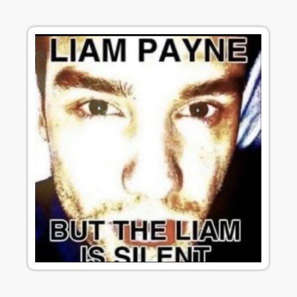 Liam Payne but the Liam is silent  Sticker
